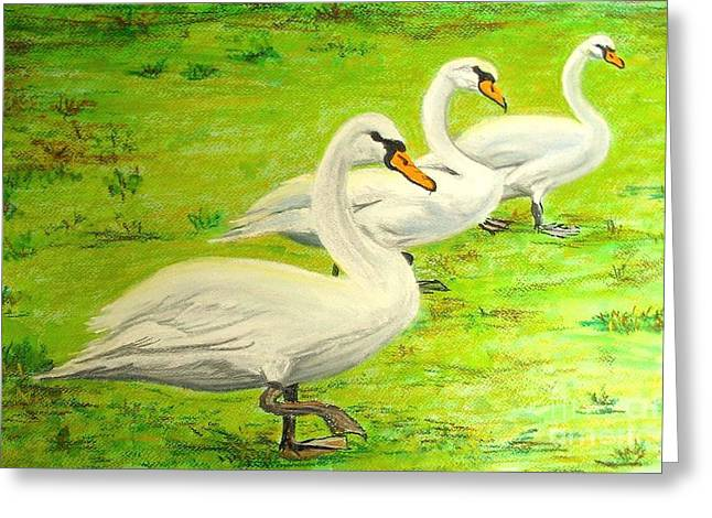 Castle. Birds Pastels Greeting Cards - Swans in a row Greeting Card by Frank Giordano