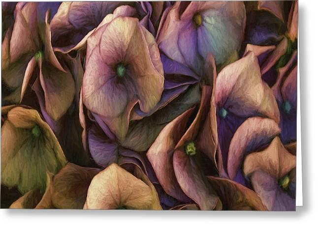 Enhanced Greeting Cards - Sweeping Greeting Card by Jean OKeeffe Macro Abundance Art