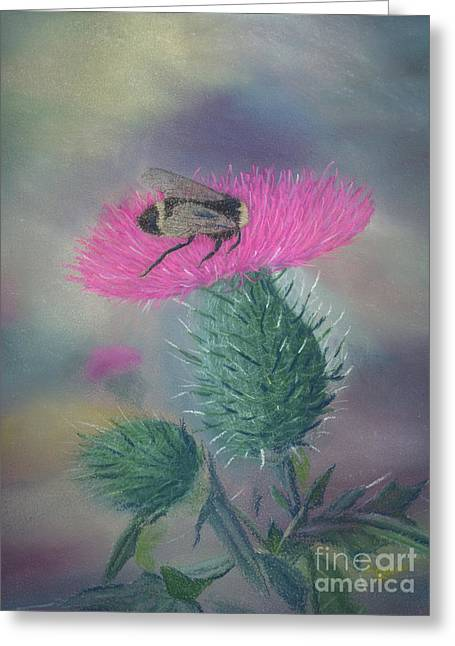Oregon Pastels Greeting Cards - Sweet and Prickly Greeting Card by Lynn Quinn