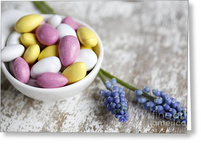 Hyacinth Greeting Cards - Sweet Candy Greeting Card by Nailia Schwarz
