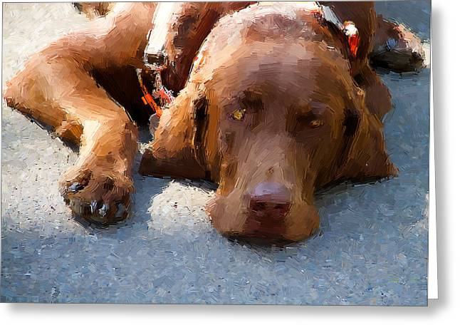 Chocolate Lab Digital Art Greeting Cards - Sweet Chocolate Greeting Card by Alice Gipson