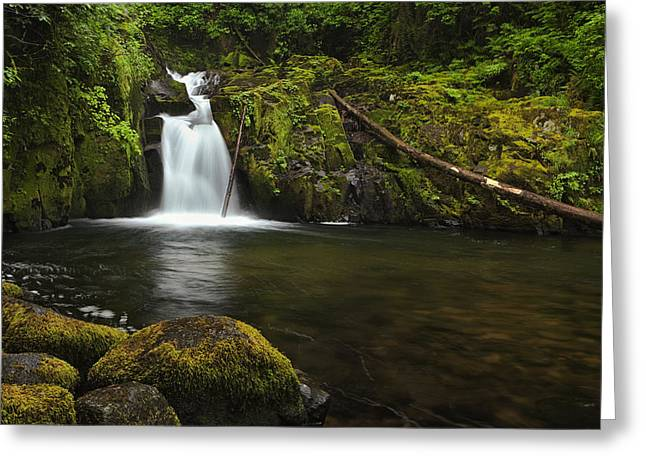 Flowing Stream Greeting Cards - Sweet Creek Falls Greeting Card by Andrew Soundarajan