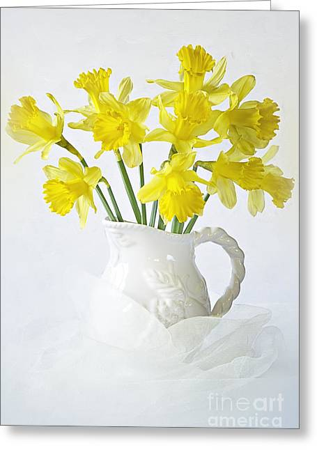 Close Focus Floral Greeting Cards - Sweet Daffs Greeting Card by Jacky Parker