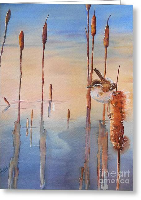 Wren Greeting Cards - Sweet Dreams Greeting Card by Patricia Pushaw
