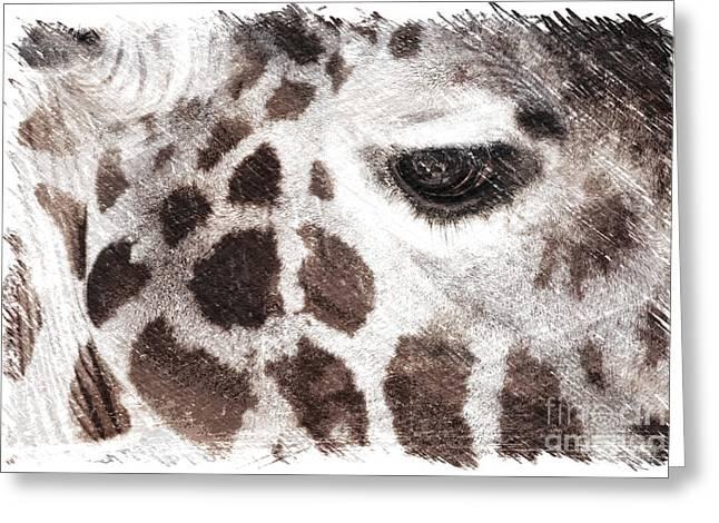 Sweet Giraffe  Greeting Card by Carol Groenen