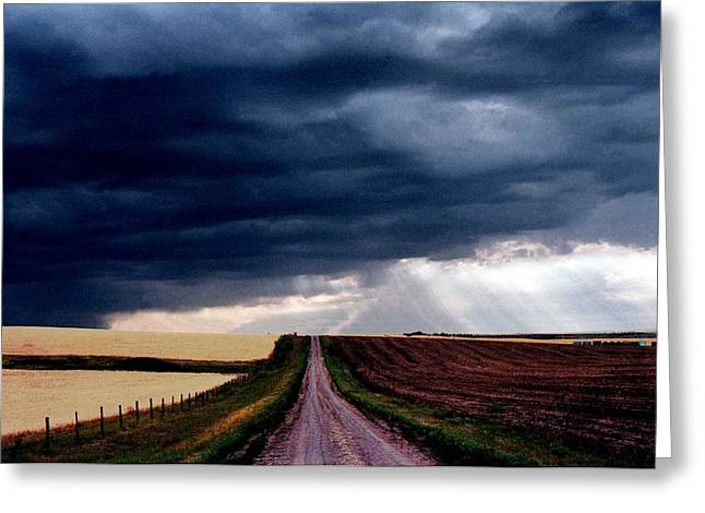 Sweet Mystery... Prairie Storm Greeting Card by David M Davis
