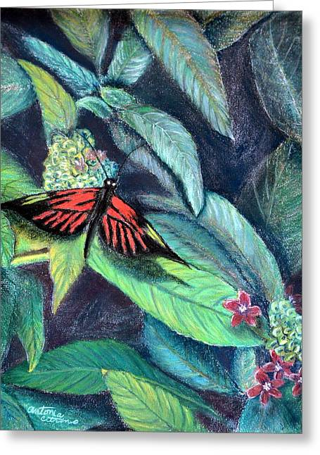 Butterflies Pastels Greeting Cards - Sweet Nectar  Pastel Greeting Card by Antonia Citrino
