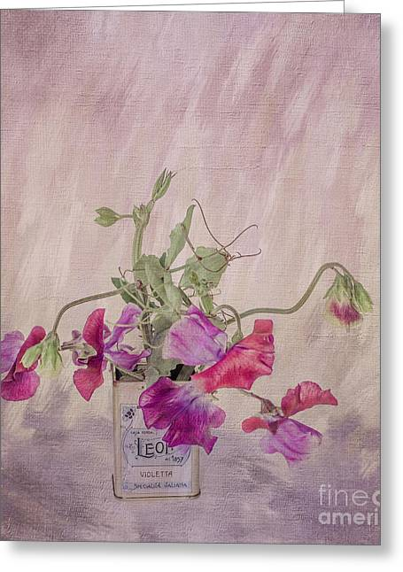 Shabbychic Greeting Cards - Sweet Peas Greeting Card by ShabbyChic fine art Photography