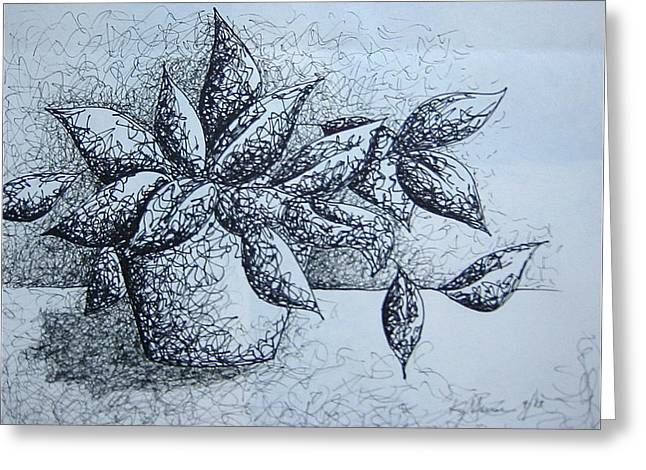 Potted Plants Drawings Greeting Cards - Sweet Seymour Greeting Card by Katie Meuse