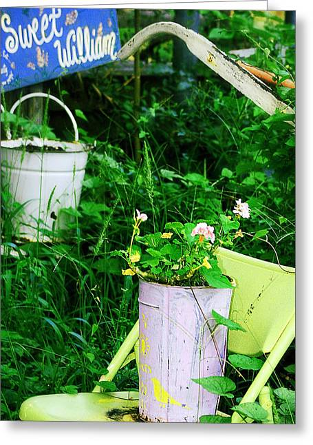 Lawn Chair Greeting Cards - Sweet William Greeting Card by Trish Mistric