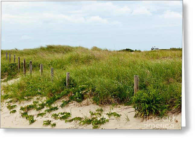 Restore The Shore Greeting Cards - Sweetest Silence By The Sea Greeting Card by Michelle Wiarda