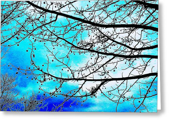 Color Enhanced Greeting Cards - Sweetgum Sky Enhanced Greeting Card by Mark Victors
