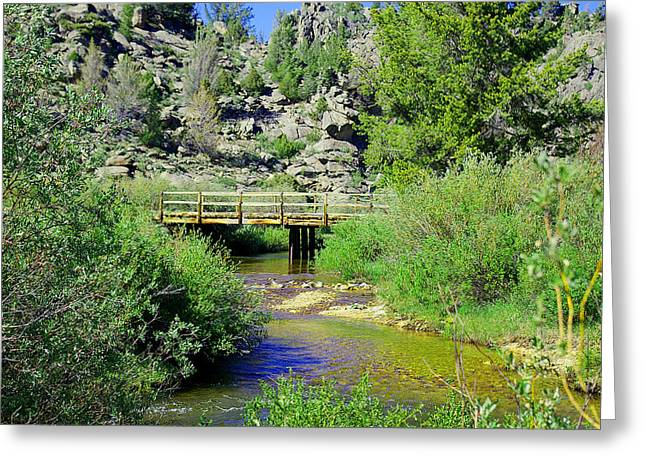 Sweetwater Greeting Cards - Sweetwater River Greeting Card by Sherri Krause