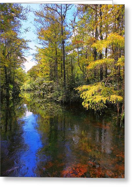 Sweetwater Greeting Cards - Sweetwater Strand - 3 Greeting Card by Rudy Umans