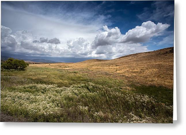 Big Sky Greeting Cards - Swept Away Greeting Card by Peter Tellone