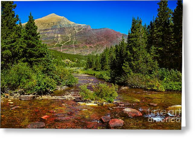 Swiftcurrent Falls Greeting Cards - Swiftcurrent Creek Greeting Card by Robert Bales