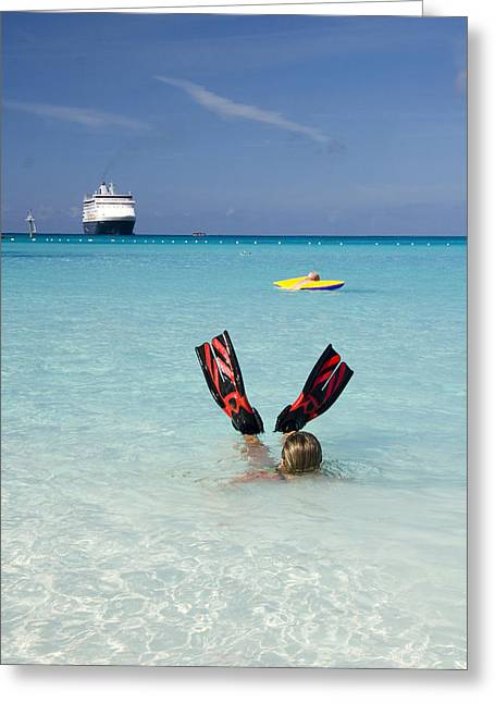Cay Greeting Cards - Swimming at a Caribbean Beach Greeting Card by David Smith