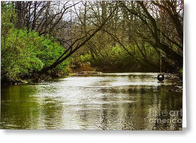 Undefined Greeting Cards - Swimming Hole 2 Greeting Card by Michael Waters