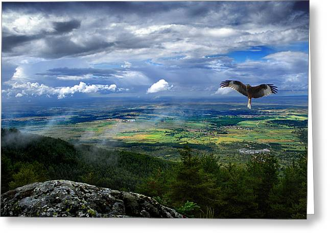 Landscape Posters Greeting Cards - Swimming in the immensity Greeting Card by Three MagicFingers
