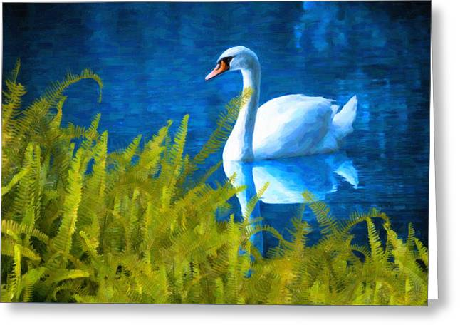 Swimming Swan And Ferns Greeting Card by Kenny Francis