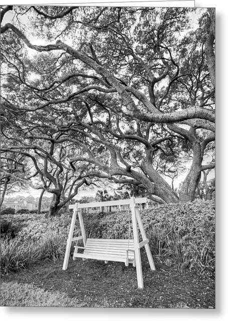 Lounge Photographs Greeting Cards - Swing Under the Oaks Greeting Card by Debra and Dave Vanderlaan