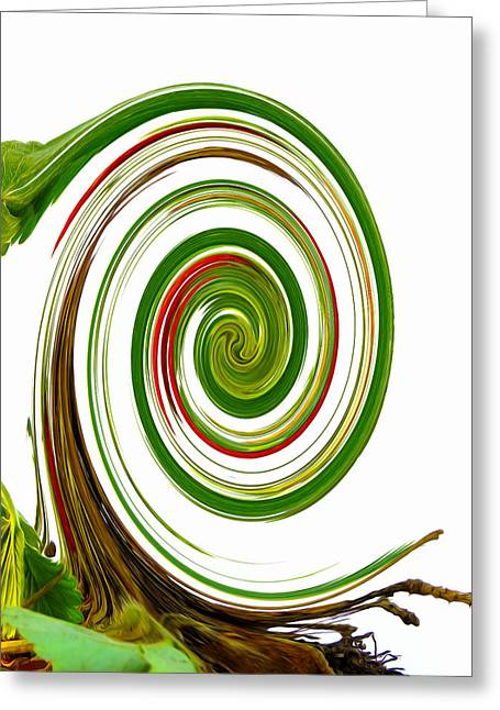 Beauty Greeting Cards - Swirl 62 Greeting Card by Lanjee Chee