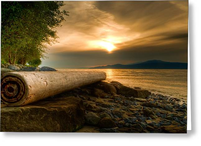Bc Coast Greeting Cards - Swirly Log Greeting Card by James Wheeler