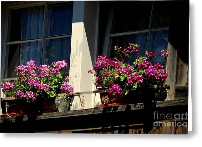 Swiss Greeting Cards - Swiss Chalet Flower Window Greeting Card by Susanne Van Hulst