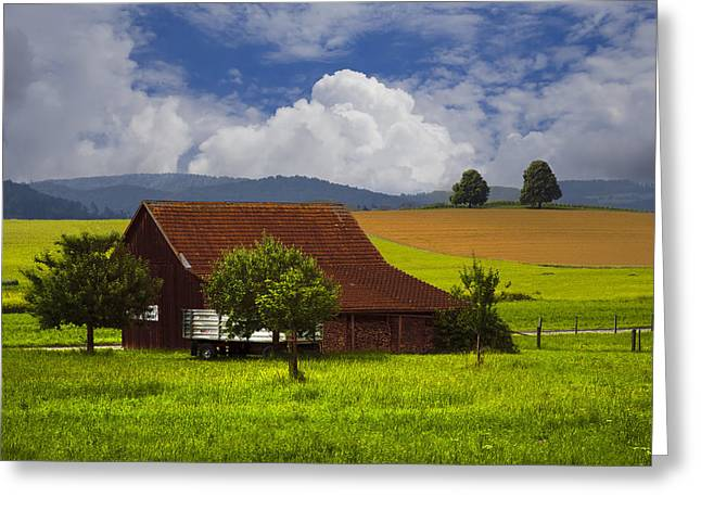 Swiss Photographs Greeting Cards - Swiss Farms Greeting Card by Debra and Dave Vanderlaan