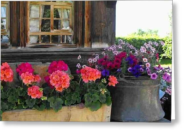 Swiss Photographs Greeting Cards - Swiss Windowbox Greeting Card by Beverly Canterbury