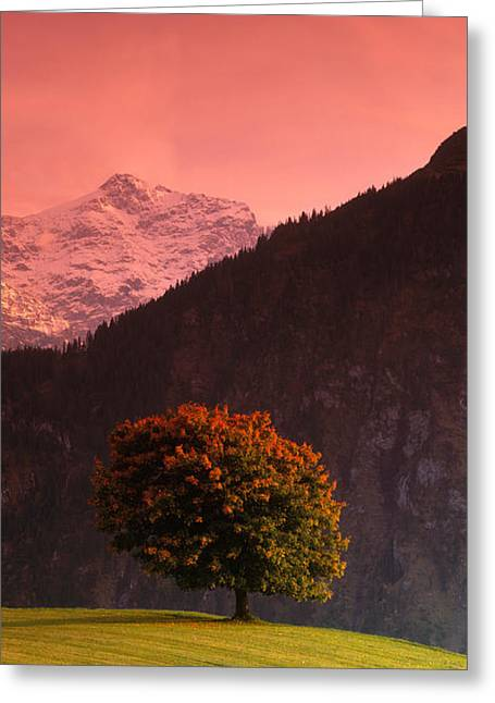 Singular Greeting Cards - Switzerland, Alps Greeting Card by Panoramic Images