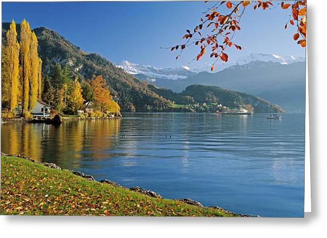 Lucerne Greeting Cards - Switzerland, Canton Lucerne, Lake Greeting Card by Panoramic Images