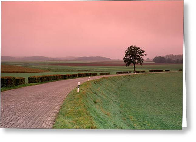 Rural Scenes Photographs Greeting Cards - Switzerland, Country Road Greeting Card by Panoramic Images