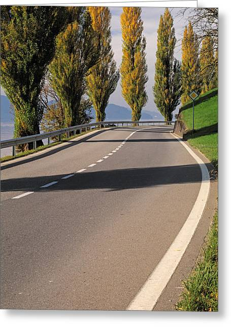 Zug Greeting Cards - Switzerland, Lake Zug, View Of Populus Greeting Card by Panoramic Images