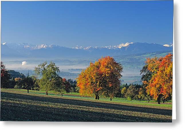 Pear Tree Greeting Cards - Switzerland, Reusstal, Panoramic View Greeting Card by Panoramic Images