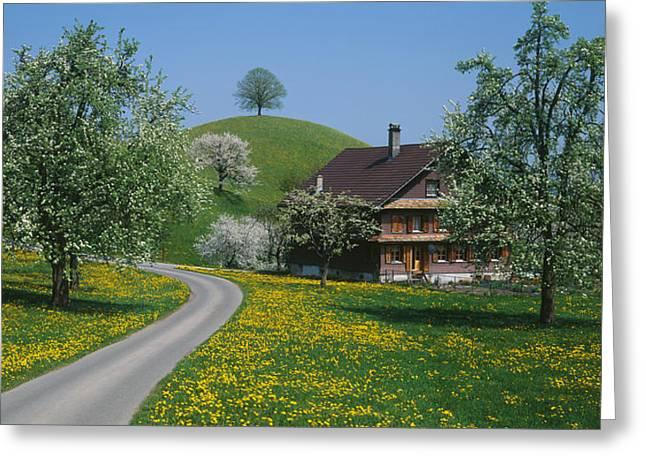 Zug Greeting Cards - Switzerland, Zug, Road Greeting Card by Panoramic Images