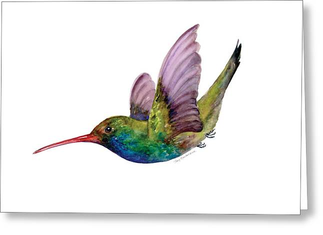 Small Birds Greeting Cards - Swooping Broad Billed Hummingbird Greeting Card by Amy Kirkpatrick