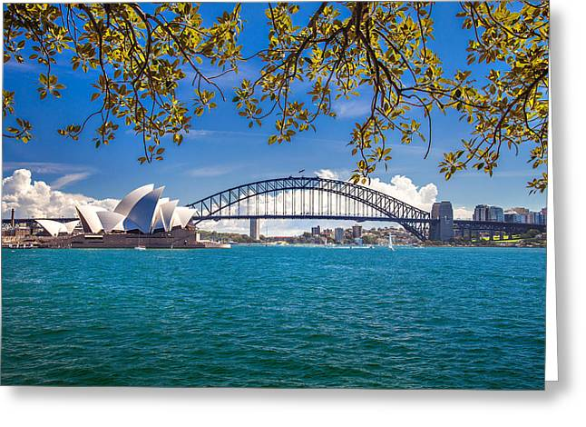Architectural Landscape Greeting Cards - Sydney Harbour Skyline 2 Greeting Card by Az Jackson