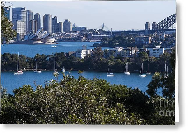 Steven Ralser Greeting Cards - Sydney Harbour Greeting Card by Steven Ralser