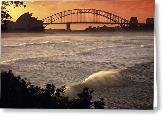 Bridge Greeting Cards Greeting Cards - Sydney Surf Time Greeting Card by Sean Davey