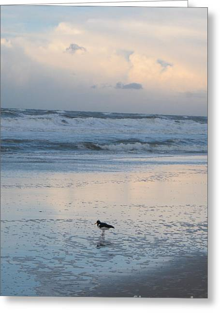 Affirmation Greeting Cards - Sylt pastel reflections Greeting Card by Heidi Sieber