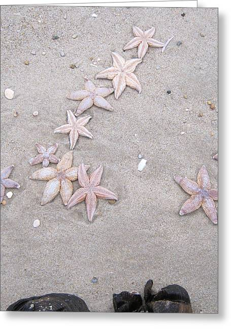 Affirmation Greeting Cards - Sylt shooting star Greeting Card by Heidi Sieber