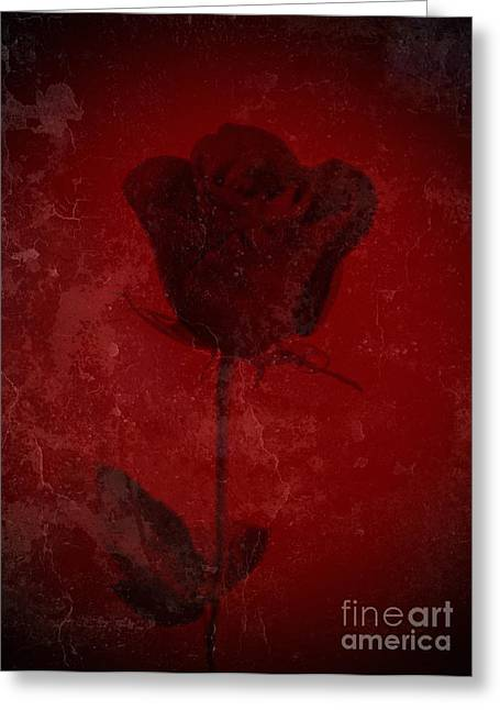 Blank Greeting Cards Mixed Media Greeting Cards - Symbol Of My Love Blooming Red Rose  Greeting Card by Adri Turner
