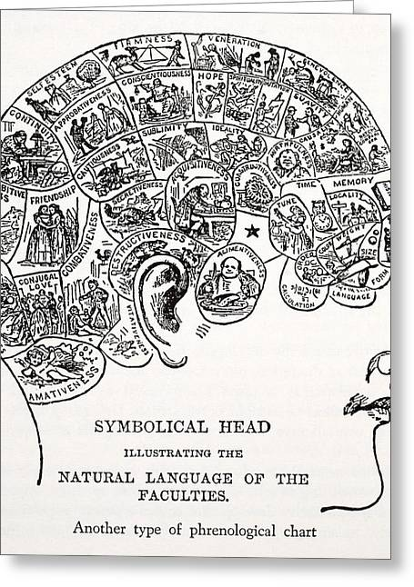Biology Drawings Greeting Cards - Symbolical Head Greeting Card by English School