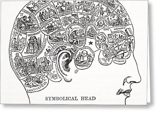 Biology Drawings Greeting Cards - Symbolical Head Showing The Natural Greeting Card by English School
