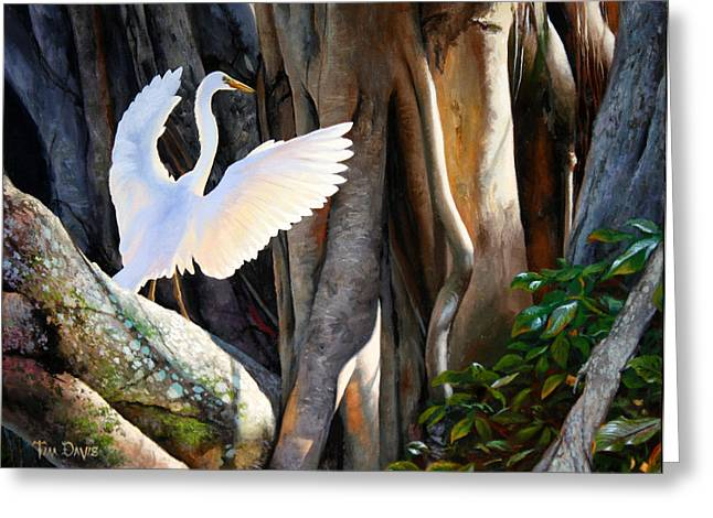 Great Egret Greeting Cards - Symphony at Sunrise Greeting Card by Tim Davis
