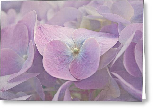 Purple Hydrangeas Greeting Cards - Symphony in Purple Greeting Card by Kim Hojnacki