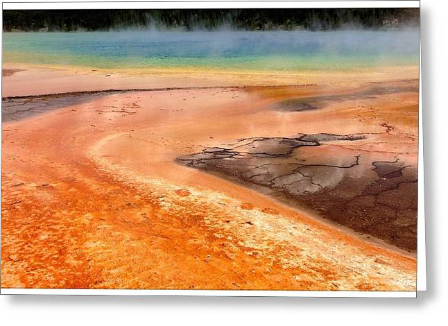 Water Biofilm Greeting Cards - T-2013-0716-0107 Greeting Card by David Truog