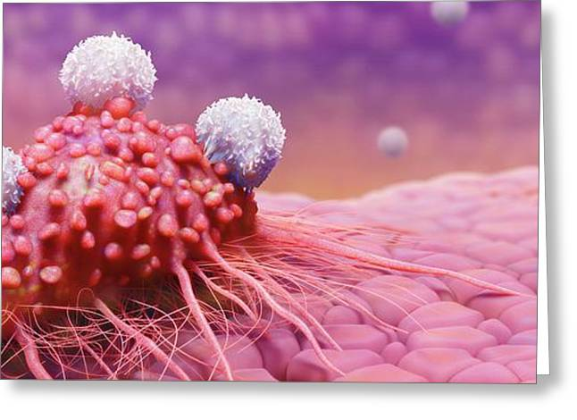 T-cells Attacking Cancer Cell Greeting Card by Tim Vernon
