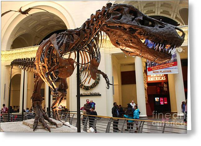 T-rex - Chicago Field Museum Greeting Card by Gregory Dyer